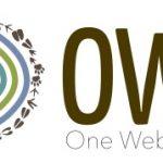 OWL small horizontal