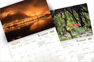 SAFCEI Calendars