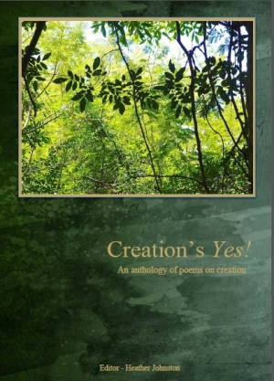Creation's YES by A Rocha