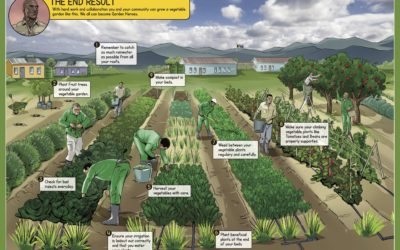 It's time for a food revolution in Africa!