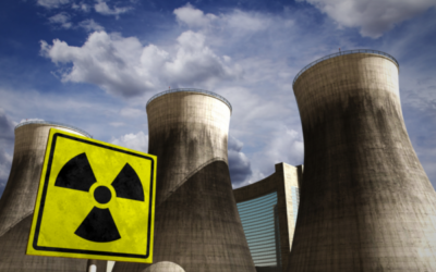 CORRUPT, STATE CAPTURE NUCLEAR DEALS LIVES ON IN NEW IRP