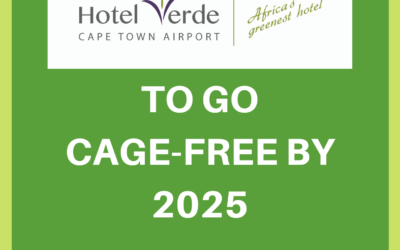 Hotel Verde to go cage-free by 2025