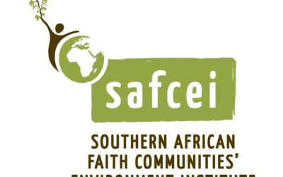 SAFCEI Calls on Parliament to Provide Rigorous Oversight of Proposed  Energy Projects