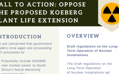 Call to action: Oppose the proposed Koeberg Plant Life Extention