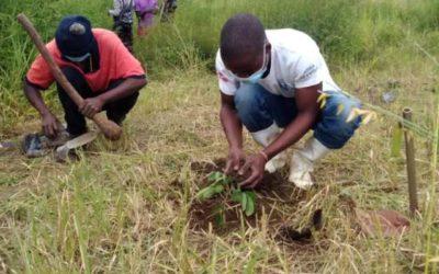 Faith Community Eco-Justice Small Grants are Open