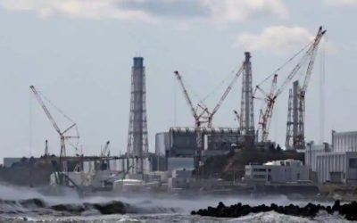 10-YEARS AFTER FUKUSHIMA DISASTER, SOUTH AFRICANS SPEAK OUT AGAINST NUCLEAR