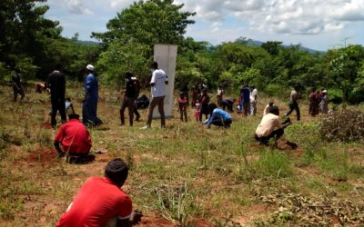 Over 6000 trees planted in Malawi: Small grants recipient shares his story
